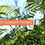 CADSPEC-SUMMER-PROMO-150x150